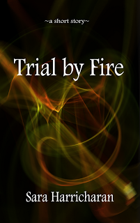 Trial by Fire (Ebook)
